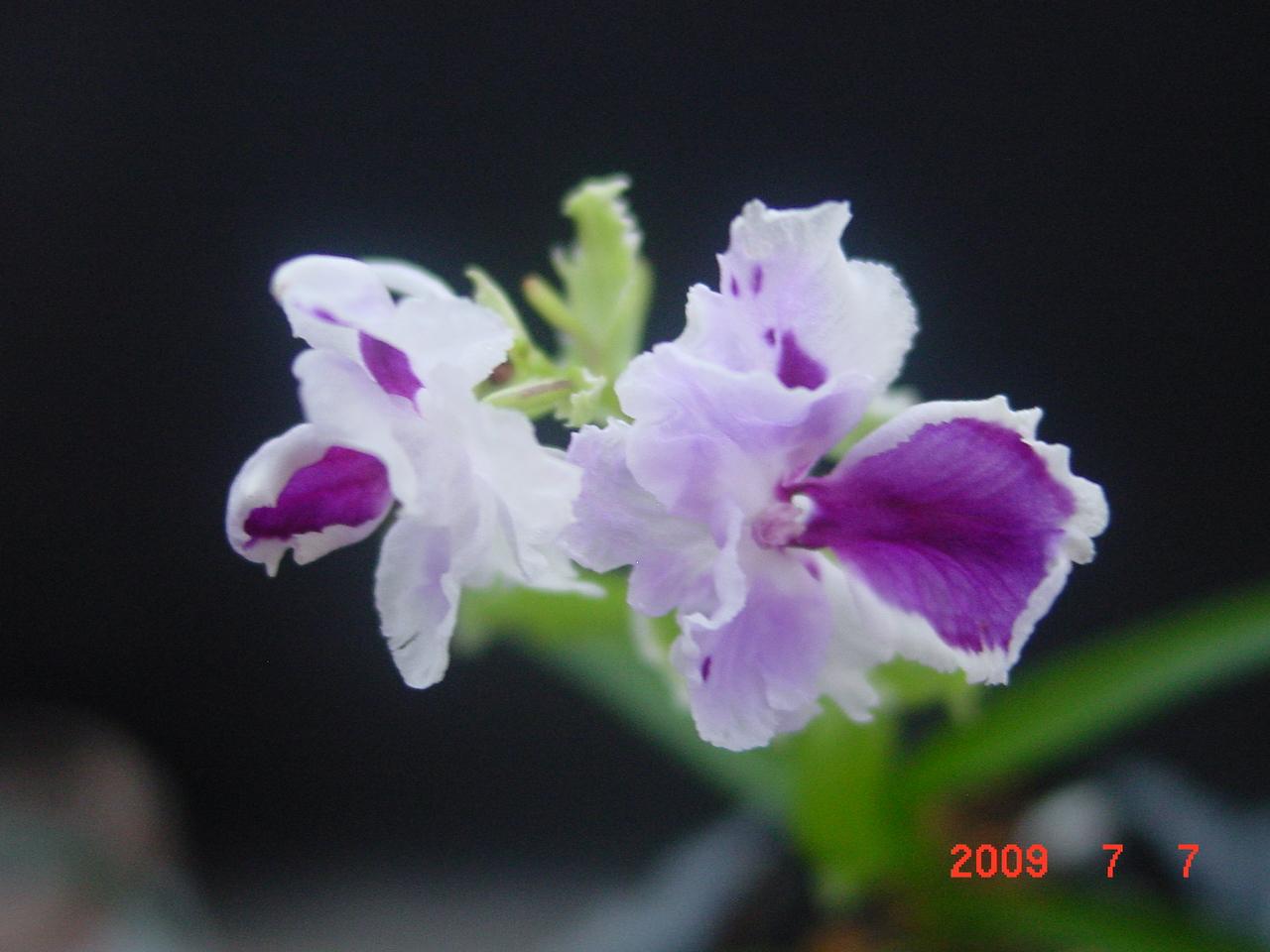 200972_047